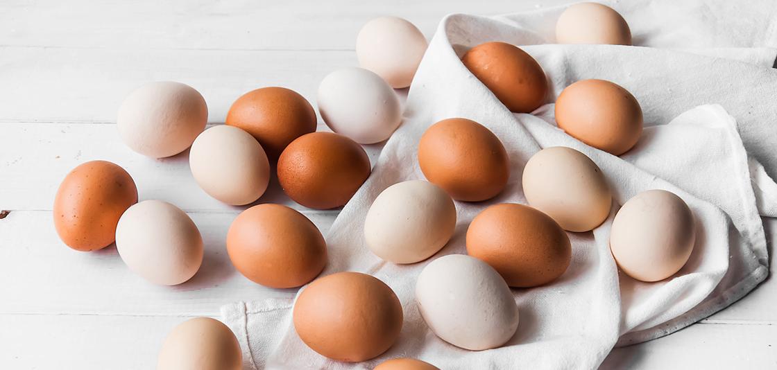 Porady kulinarne i zdrowotne - Blog
